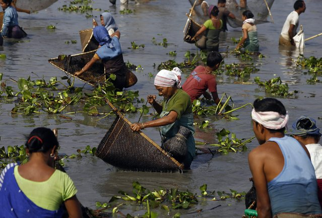 Villagers with their fishing nets participate in a community fishing event at a lake on the eve of Bhogali Bihu festival at Sonapur area in the northeastern Indian state of Assam January 14, 2015. The annual festival marks the end of the winter harvesting season. (Photo by Reuters/Stringer)