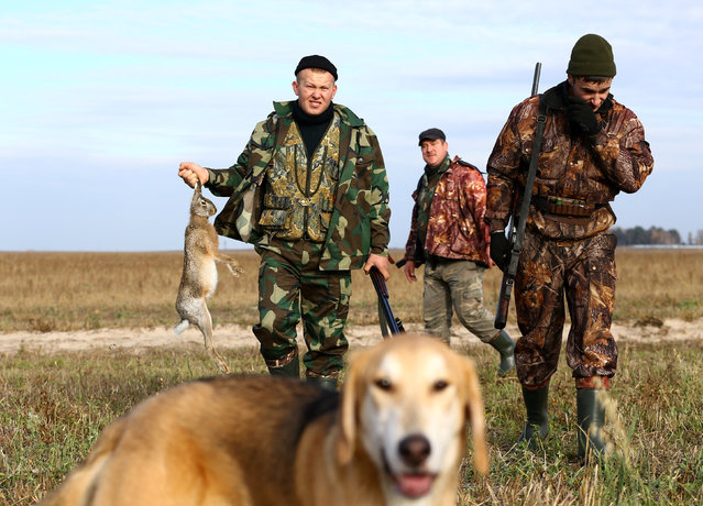A hunter carries a hare he just killed during a hunt as he walks with friends in a field near the village of Novosyolki, Belarus November 5, 2016. (Photo by Vasily Fedosenko/Reuters)