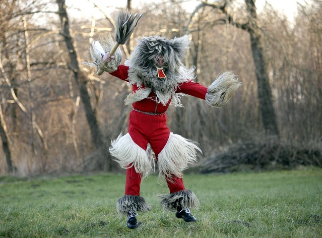 """A member of the Kurent Ethnological Society dressed up as a native folklore character named """"Devil"""" poses ahead of the Carnival in Spuhlja January 28, 2015. (Photo by Srdjan Zivulovic/Reuters)"""