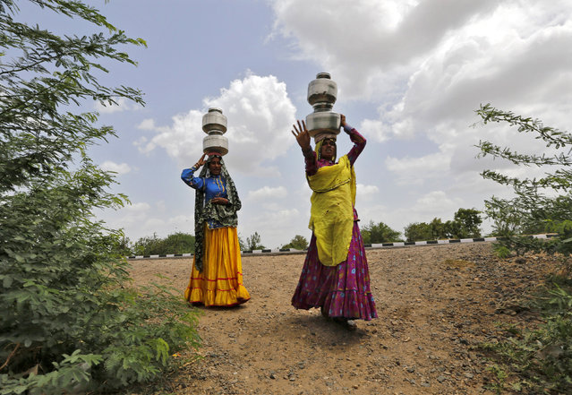 Village women walk carrying metal pitchers filled with drinking water in Gibpura village in Gujarat July 2, 2014. (Photo by Amit Dave/Reuters)