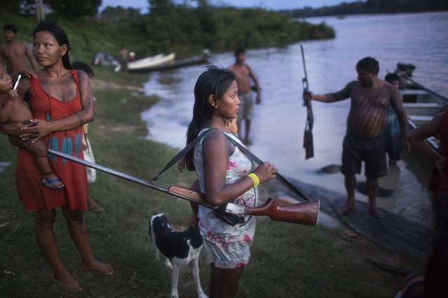 A Xikrin woman holds her husband's shotgun while he cleans freshly hunted peccary in the river. According to tradition, Xikrin women are not allowed to leave the village while their husbands are out hunting a wife must patiently wait for his return. (Taylor Weidman)