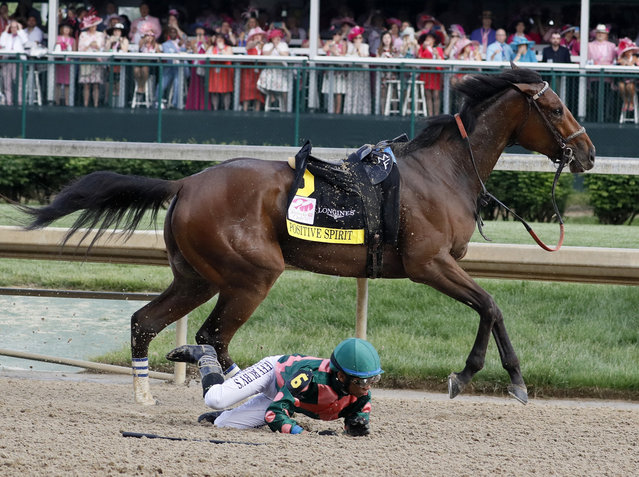 Manny Franco loses Positive Spirit during the 145th running of the Kentucky Oaks horse race at Churchill Downs Friday, May 3, 2019, in Louisville, Ky. (Photo by John Minchillo/AP Photo)