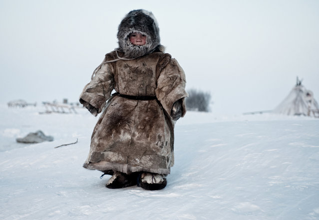 """""""Living on the Tundra..."""" Young Nenet boy in Siberia Yamal plays in –30 degrees. Photo location: Siberia, Russia. (Photo and caption by Simon Morris/National Geographic Photo Contest)"""