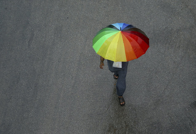 An Indian man walks with an umbrella during a rain in Hyderabad, India, Thursday, August 1, 2019. India receives its monsoon rains from June to September. (Photo by Mahesh Kumar A./AP Photo)