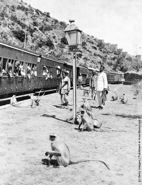 1930: Monkeys watching commuters on a railway platform in India