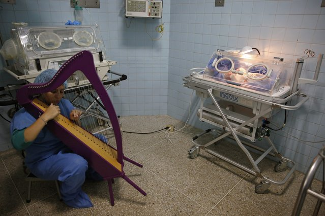 """A member of """"El Sistema"""" plays on a harp, as part of its """"New Members"""" program, next to a newborn baby at a public maternity hospital in Caracas October 1, 2014. In a nation awash with guns and with one of the world's highest murder rates, Venezuela's hugely successful classical music program, known as """"El Sistema"""" (The System), has for decades sought to counteract poor children's exposure to violence with the gentle and inspiring influence of classical music. (Photo by Carlos Garcia Rawlins/Reuters)"""