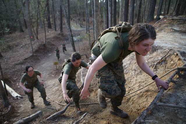 Female Marines climb a hill while running the Endurance Course during Marine Combat Training (MCT) on February 20, 2013 at Camp Lejeune, North Carolina.  Since 1988 all non-infantry enlisted male Marines have been required to complete 29 days of basic combat skills training at MCT after graduating from boot camp. MCT has been required for all enlisted female Marines since 1997. About six percent of enlisted Marines are female.  (Photo by Scott Olson)