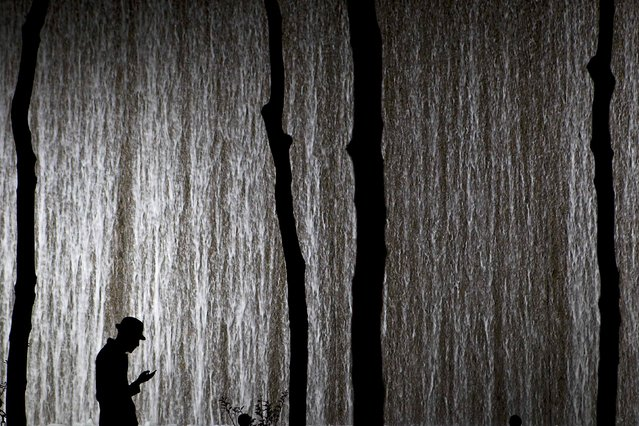 A man wearing a fedora hat looks at his phone in a courtyard with a water feature (rear) in New York November 24, 2014. (Photo by Carlo Allegri/Reuters)