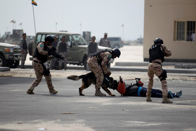 "Saudi Special Forces unit are seen during the month-long GCC joint security exercise ""Arabian Gulf Security 1"" in Manama, Bahrain November 1, 2016. (Photo by Hamad I. Mohammed/Reuters)"