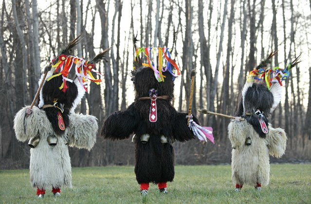 Members of the Kurent Ethnological Society dressed in native masks and costumes pose ahead of the Carnival in Spuhlja January 28, 2015. (Photo by Srdjan Zivulovic/Reuters)