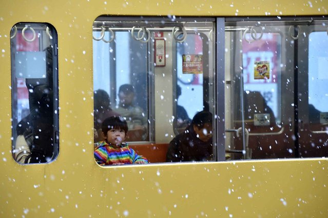 A boy looks at falling snow from a train window in Tokyo on November 24, 2016. (Photo by Kazuhiro Nogi/AFP Photo)