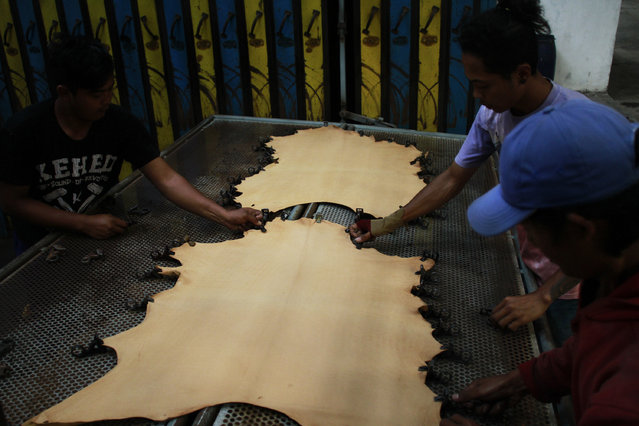 Workers press the leathers. (Photo by Rezza Estily/JG Photo)