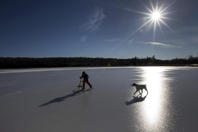 Oskar Hagberg rides his kicksled accompanied by his uncle's dog, Alice, on a frozen White Lake near Erinsville, Ontario, Canada, on Christmas Day, Sunday, December 25, 2016. (Photo by Lars Hagberg/The Canadian Press via AP Photo)