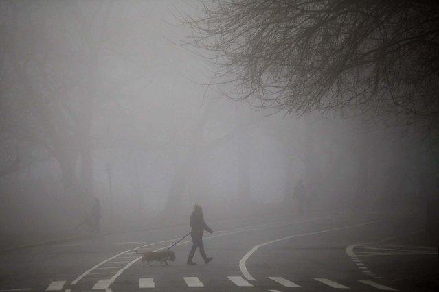 People walk in Brooklyn's Prospect Park. (Photo by Spencer Platt/Getty Images)