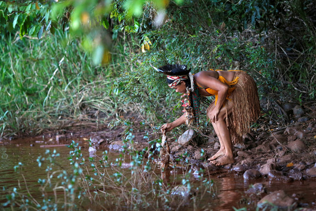 An Indigenous woman from the Pataxo Ha-ha-hae tribe holds up a dead fish near Paraopeba river, after a tailings dam owned by Brazilian mining company Vale SA collapsed, in Sao Joaquim de Bicas near Brumadinho, Brazil on January 28, 2019. (Photo by Adriano Machado/Reuters)