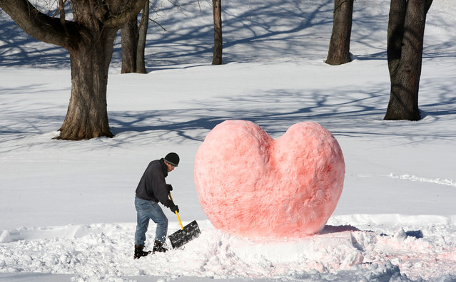 Gilberto Lozada of Winchester, Va. constructs the base of his Valentine's Day snow sculpture in the city's Jim Barnett Park Friday, February 14, 2014. Lozada used food coloring to tint the work and said he was going to shoot a photo to e-mail to a friend in New Jersey as a Valentine's Day greeting. (Photo by Jeff Taylor/AP Photo/The Winchester Star)
