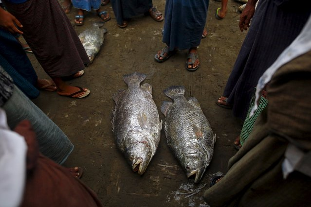 Rohingya Muslims stand at a fish market at a refugee camp outside Sittwe, Myanmar May 21, 2015. Picture taken May 21, 2015. (Photo by Soe Zeya Tun/Reuters)