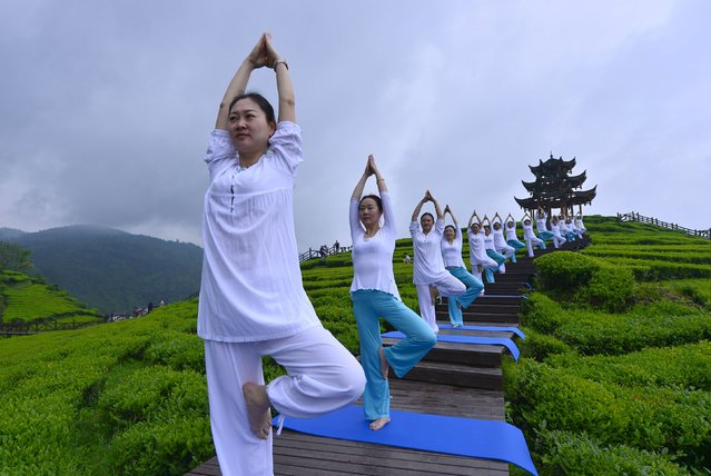 People perform yoga at a tea culture park to promote the tea there, in Enshi, Hubei province, April 24, 2016. (Photo by Reuters/Stringer)