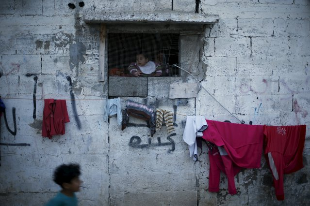 A Palestinian girl looks out through the window of her family's house in the northern Gaza Strip March 25, 2015. (Photo by Mohammed Salem/Reuters)
