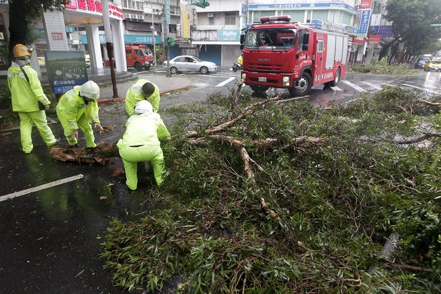 Fire fighters remove fallen trees caused by strong wind from Typhoon Soudelor in Taipei, Taiwan, August 8, 2015. (Photo by Pichi Chuang/Reuters)