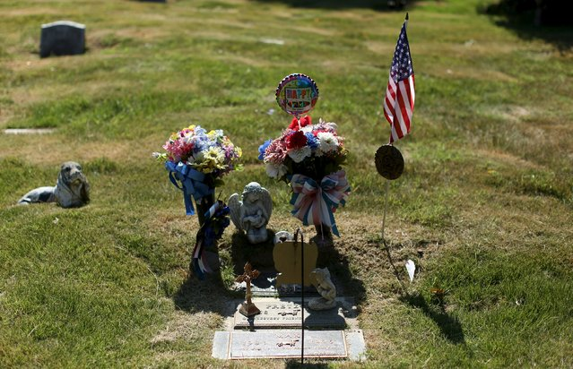 The gravesite of a husband and wife, and their dogs, are seen at the Aspin Hill Memorial Park in Aspen Hill, Maryland August 25, 2015. (Photo by Gary Cameron/Reuters)