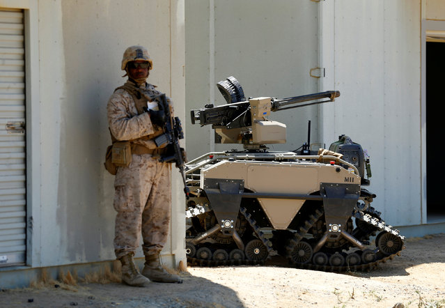 A U.S. Marine stands near a Multi-Utility Tactical Transport (MUTT) during a patrol as part of Rim of the Pacific (RIMPAC) 2016 an exercise held at Camp Pendleton, California United States, July 13, 2016. (Photo by Mike Blake/Reuters)