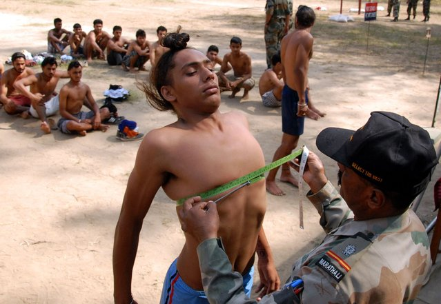 A potential Indian Army recruit has his chest measured during a physical fitness test at an Army recruitment rally at Kapurthala, around 20 km from Jalandhar on October 17, 2012. The Indian Army is a voluntary service and the world's largest standing volunteer army, with over a million active personnel and just under a million in reserve. (Photo by Sahmmi Mehra/AFP Photo)