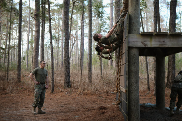 Sgt. Adam Lewis of Council Bluffs, Iowa works with female Marines as they try to climb an obstacle on the Endurance Course during Marine Combat Training (MCT) on February 20, 2013 at Camp Lejeune, North Carolina.  Since 1988 all non-infantry enlisted male Marines have been required to complete 29 days of basic combat skills training at MCT after graduating from boot camp. MCT has been required for all enlisted female Marines since 1997. About six percent of enlisted Marines are female.  (Photo by Scott Olson)