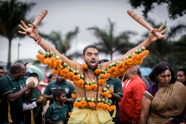 A Hindu devotee hooked with spikes, lime, coconuts, fruits and flowers to his mouth and body gestures takes part in the annual Hindu Thaipoosam Kavady festival held at Shree Emperumal Hindu Temple in Mount Edgecombe township, some 42 kms north of Durban, South Africa on February 3, 2018. (Photo by Rajesh Jantilal/AFP Photo)