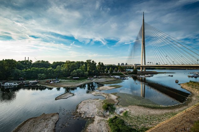 Picture shows the Ada bridge and the low water level at an estuary of the Sava river in Belgrade on July 28, 2015. (Photo by Andrej Isakovic/AFP Photo)