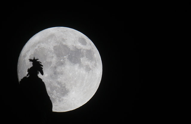 A supermoon rises over the Statue of Freedom on the Capitol dome in Washington, DC November 13, 2016. The supermoon will venture to its closest point in 68 years, leaving only 221,524 miles (356,508 km) between Earth and the moon. (Photo by Andrew Caballero-Reynolds/AFP Photo)