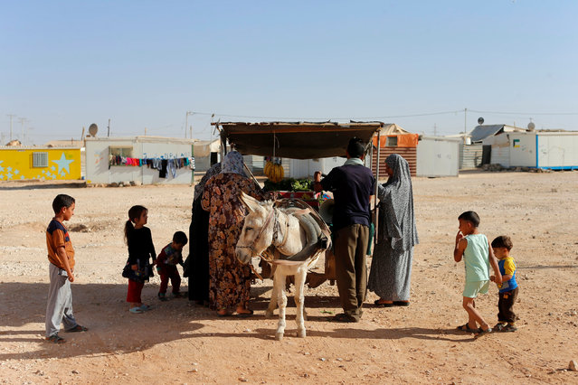 Syrian refugees buy vegetables and fruit displayed on a donkey cart in Zaatari refugee camp near the border with Syria, in Mafraq, Jordan October 14, 2016. (Photo by Ammar Awad/Reuters)