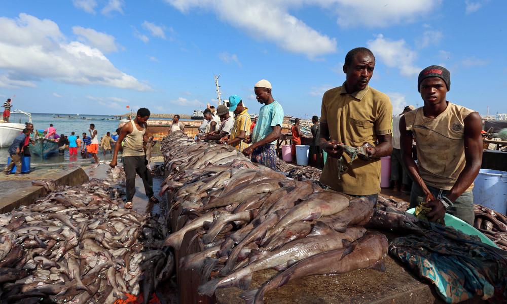 Fishing Season in Somalia