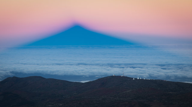 Earth science runner-up: Colossus by Alejandro Roman Gonzalez. The shadow of Mount Teide in Tenerife at sunset towers over the Slooh Teide observatory. The sea of clouds shrouded the landscape at lower altitude. The colours in the sky are due to the reflection of the different wavelengths of the white light as the sun sinks below the horizon. (Photo by Alejandro Roman Gonzalez/University of Exeter/Royal Society Publishing Photography Competition 2018)