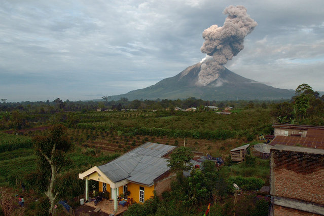 Villagers who live near mount Sinabung watch its eruption and spewing dust to the air in Karo, North Sumatra, on December 31, 2013. More than 19,000 people have been displaced by the volcano in Indonesia that has been erupting for months and shot lava into the air nine times overnight, an official said. (Photo by Sutanta Aditya/AFP Photo)
