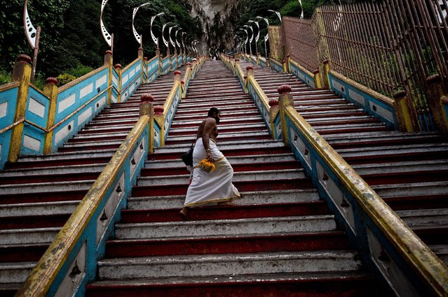 A Hindu priest walks up the 272 stairs to the Batu Caves temple outside of Kuala Lumpur on May 9, 2014. The temple built-inside centuries old limestone-formed Batu Caves, is one of the most popular Hindu shrines outside India, dedicated to Lord Murugan. (Photo by Manan Vatsyayana/AFP Photo)