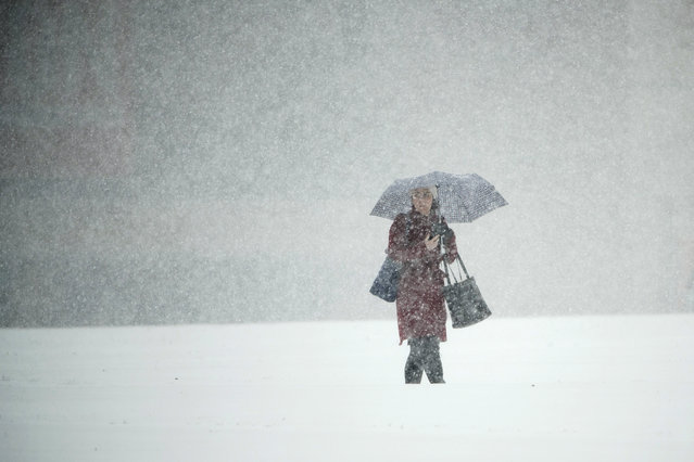 A person walks across Independence Mall during a snow storm in Philadelphia, Thursday, November 15, 2018. (Photo by Matt Rourke/AP Photo)