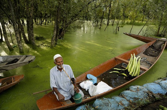 A Kashmiri vegetable vendor smokes a hookah, or a hubble bubble, on his boat as he waits for customers in Srinagar, India, Thursday, July 23, 2015. Set in the Himalayas, Kashmir is a green, saucer-shaped valley full of fruit orchards and surrounded by snowy mountain ranges. About 100 lakes dot its highlands and plains. (Photo by Mukhtar Khan/AP Photo)