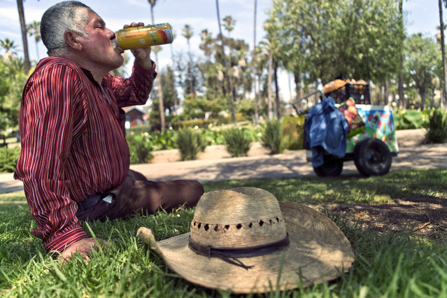 Ice-cream vendor Jose Villa, 65, from Sinaloa, Mexico, cools off on the edge of Echo Park lake in Los Angeles on Saturday, July 8, 2017. An excessive heat wave in Southern California set records in several cities, breaking a mark set for the date in Los Angeles 131 years ago, the National Weather Service said. Around noon, the downtown temp spiked at 96 degrees, topping the 1886 record by a degree. (Photo by Damian Dovarganes/AP Photo)