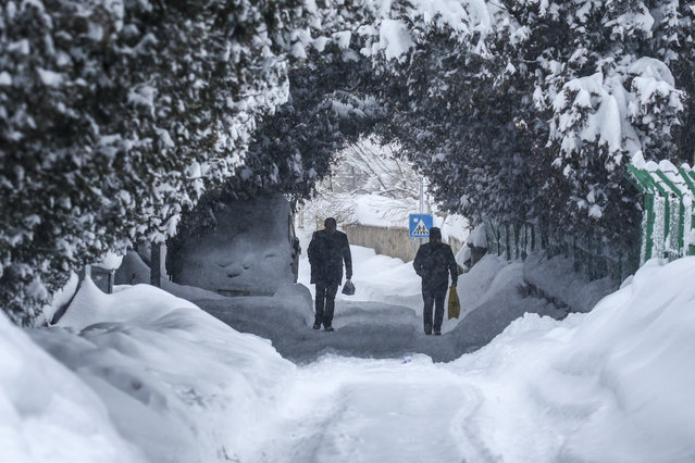People walk on a road covered by trees and snow after heavy snowfall in Turkey's eastern Van province on February 13, 2020. Roads have closed in 687 settlements in eastern Turkish city of Van after recent snowfall with snow depth exceeding one meter. (Photo by Ozkan Bilgin/Anadolu Agency via Getty Images)