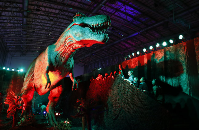 "South African children observe a state of the art life size animatronic  Tyrannosaurus rex dinosaur during a visit to the ""Days of the Dinosaurs"" exhibtion at the Cape Town International Convention Centre, in Cape Town, South Africa, August 12, 2014. The acclaimed international travelling exhibition was designed in Argentina and constructed in China featuring life size moving and roaring dinosaurs. (Photo by Nic Bothma/EPA)"