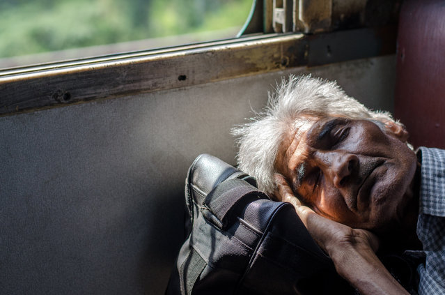 Indian passengers can be seen taking a quick nap on a local train in New Delhi, October 2017. (Photo by Ankur Dutta/Barcroft Media)
