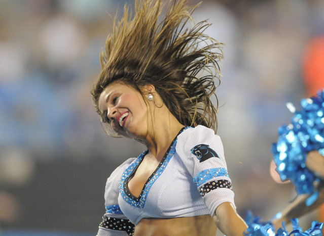 A Carolina Panthers cheerleader performs during the second half of a preseason NFL football game against the Buffalo Bills in Charlotte, N.C., Friday, August 8, 2014. (Photo by Mike McCarn/AP Photo)