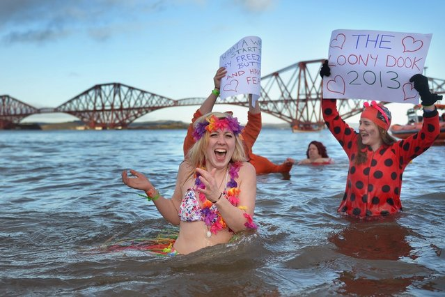 Sarah Johnston reacts to the water temperature as she joins around 1,000 New Year swimmers, many in costume, in front of the Forth Rail Bridge during the annual Loony Dook Swim in the River Forth on January 1, 2013 in South Queensferry, Scotland. Thousands of people gathered last night to see in the New Year at Hogmanay celebrations in towns and cities across Scotland.  (Photo by Jeff J. Mitchell)