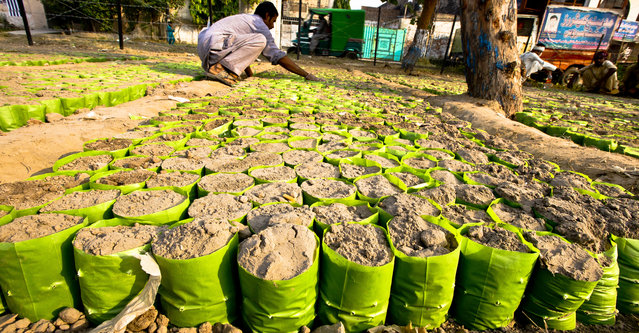 A gardener prepares sand for saplings plantation at a nursery in Lahore, Pakistan, 22 October 2014. Trees are one of the world's single largest sources of Oxygen, they not only reduce pollutions but also provide resistance to floods. (Photo by Omer Saleem/EPA)