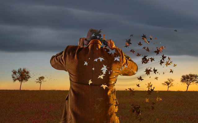 """Autumn Years"". (Adam Baron)"
