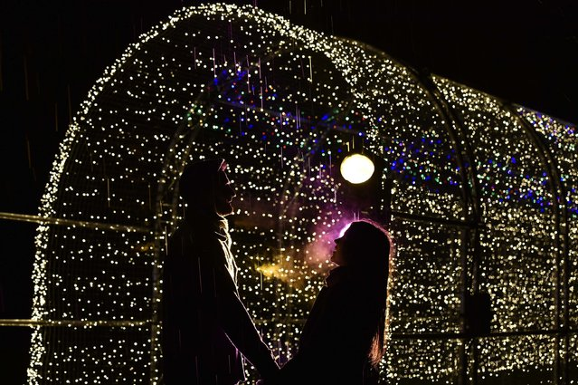 Alex Little (L) and Miranda Jenatka pose as they view a light installation at Kew Gardens in west London, November 25, 2014. The annual Christmas illuminated night trail at the botanical gardens will open from Wednesday until January 3, 2015. (Photo by Toby Melville/Reuters)
