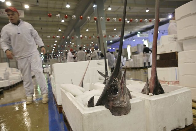 Swordfish are sold at the fish pavilion in Rungis International food market as buyers prepare for the Christmas holiday season in Rungis, south of Paris, December 11, 2015. (Photo by Philippe Wojazer/Reuters)