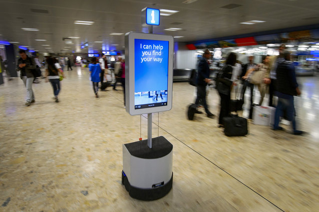 A robot helps passengers to find their way through the baggage claim area of the Geneva International Airport, on June 13, 2013. Geneva airport is using the autonomous robot to accompany travelers to a dozen destinations such as trolleys, ATM, lost luggage room, showers or toilets. (Photo by Fabrice Coffrini/AFP Photo)