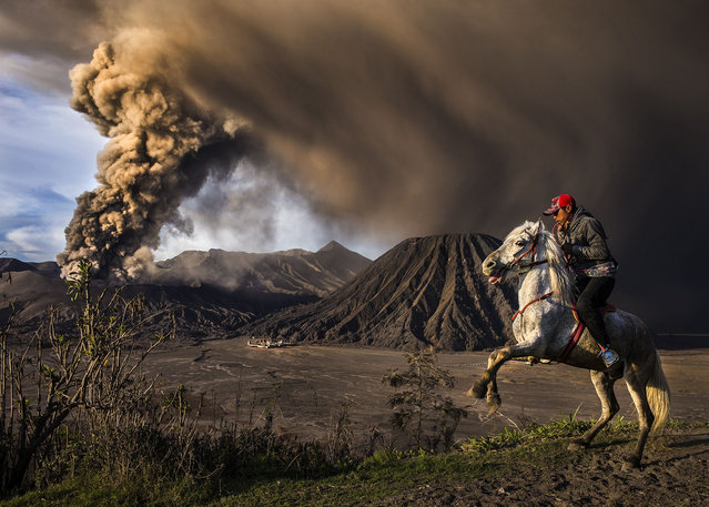 On Guard, Indonesia, by Riksa Dewantara. The explosive eruption and loud rumbling of the Mount Bromo volcano in Bromo Semeru Tengger national park scared the horse causing it to rear up onto its hind legs. Second place, Journeys and Adventures category. (Photo by Riksa Dewantara/SIPA Contest)